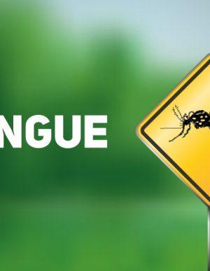 dengue-20190523-1260055657